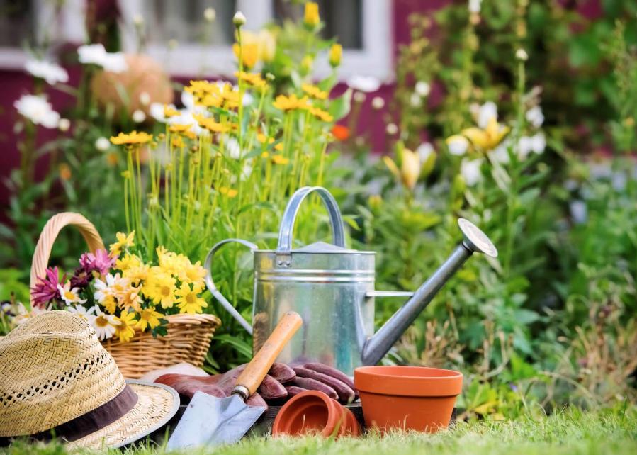 Le secret de votre jardin !